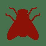 icon_header_fliege